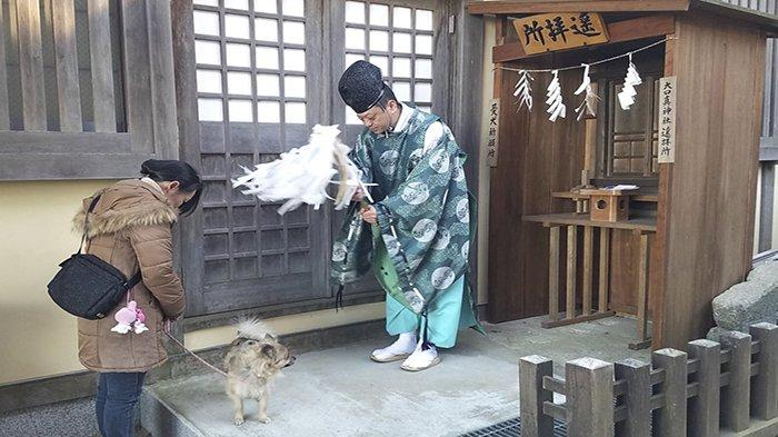 Kuil Musashi Mitake di Tokyo Jepang, Kuil Khusus untuk Mendoakan Anjing Peliharaan