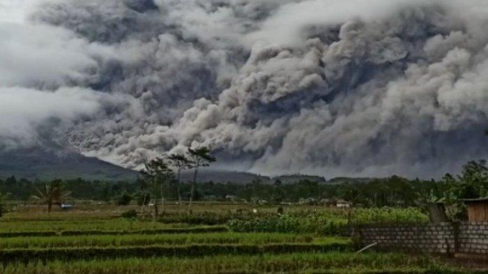 Berita Foto Gunung Semeru Keluarkan Awan Panas Sejauh 4 5 Kilometer Tribunnews Com Mobile