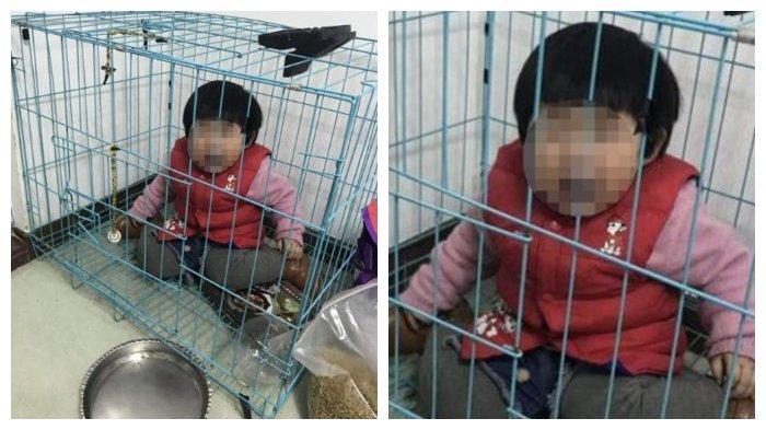 Ayah Kurung Anak Sendiri di Kandang Anjing, Kirim Fotonya pada Mantan Istri untuk Mengejeknya