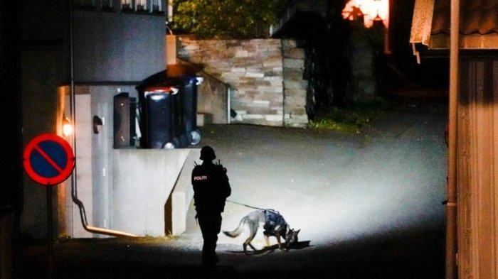 Seorang Pria Bersenjata Panah Melakukan Serangan Sporadis di Norwegia, Lima Orang Tewas