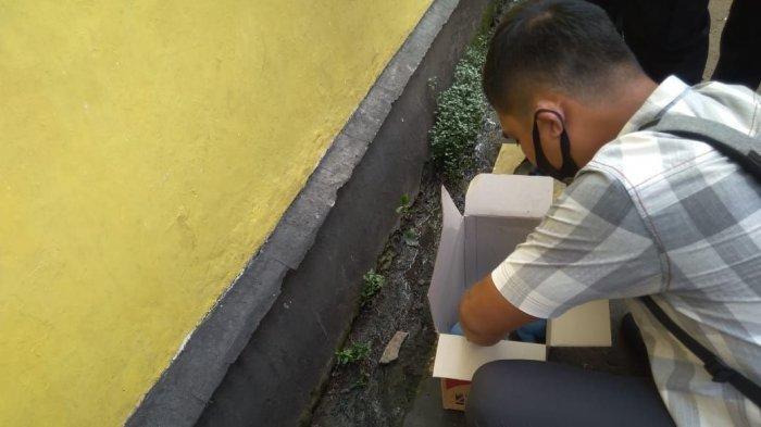 Sakit Perut hingga Putuskan Minum Obat Lambung, ART di Bogor Lahirkan Bayinya Sendirian di Toilet