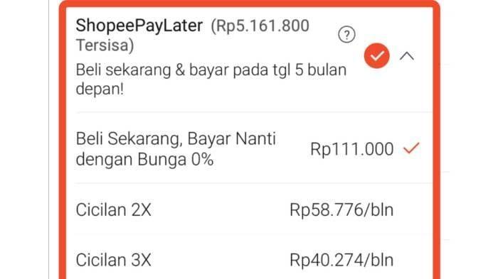 Cara Bayar Tagihan Shopee PayLater Lewat ShopeePay, Transfer Bank hingga Indomaret