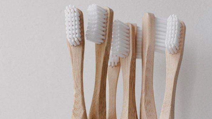 Dianggap Ramah Lingkungan, Sikat Gigi Bambu Lebih Maksimal Lindungi dari Kuman dan Bakteri?