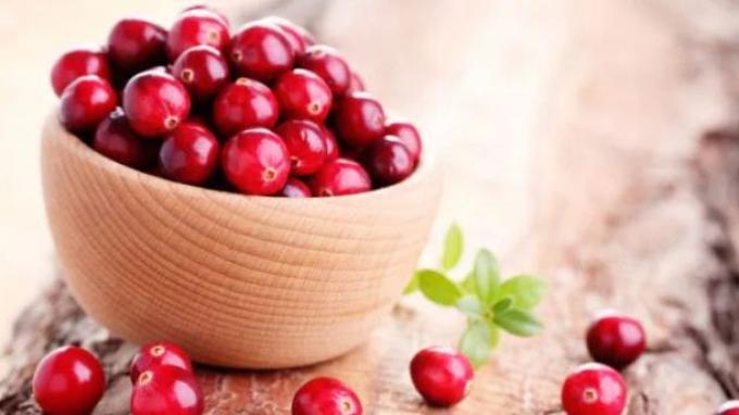 4 Manfaat Cranberry Bagi Kesehatan: Mencegah Infeksi Saluran Kemih hingga Memperkuat Usus