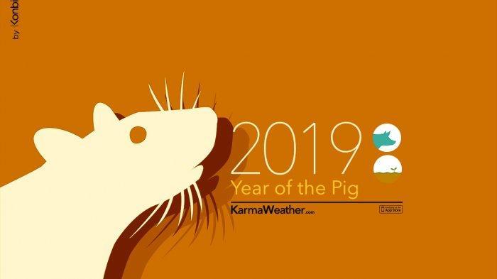 Tahun Baru Imlek jatuh hari ini, Selasa (5/2/2019). Simak ramalan Shio Tikus di Tahun Babi Tanah. Apakah kamu penuh keberuntungan di tahun ini?