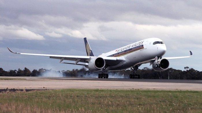 Yang Bisa Menetapkan Adanya Duopoli Bisnis Penerbangan Adalah KPPU
