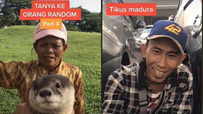 Video Sosial Eksperimen Tanya ke Orang soal Otter, Ada yang Sebut Tikus Madura hingga Anjing Laut