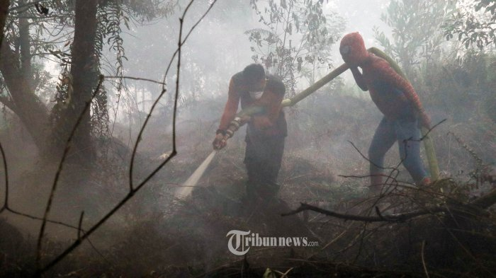 Dirut PT SSS Ditetapkan Menjadi Tersangka Kasus Kebakaran Hutan dan Lahan di Riau