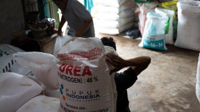 Hingga April, Penyaluran Pupuk Subsidi Bojonegoro Capai 33.744 Ton
