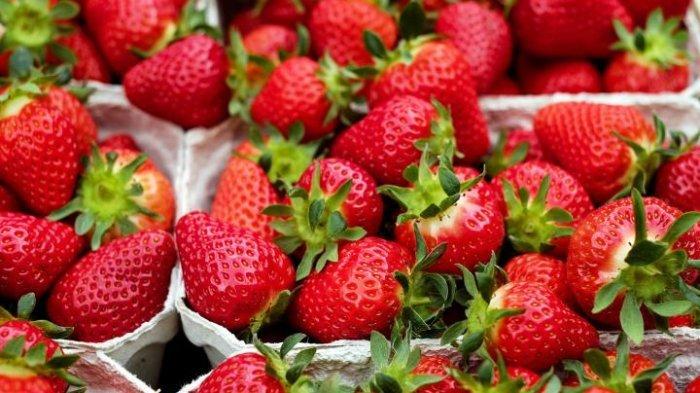 5 Manfaat Buah Stroberi untuk Kesehatan Tubuh, Jadi Obat Nyeri Sendi dan Asam Urat