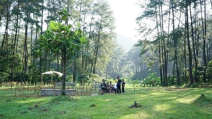 Suasana Camping di Hutan Hujan Sentul, Bogor.