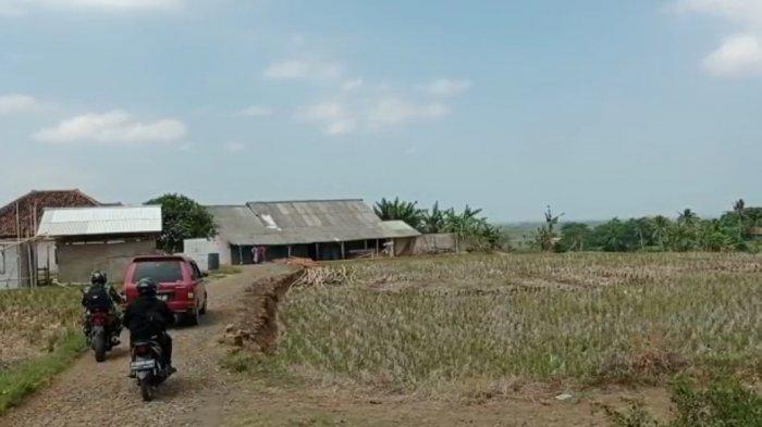 Suasana Dusun Kalapa Satangkal