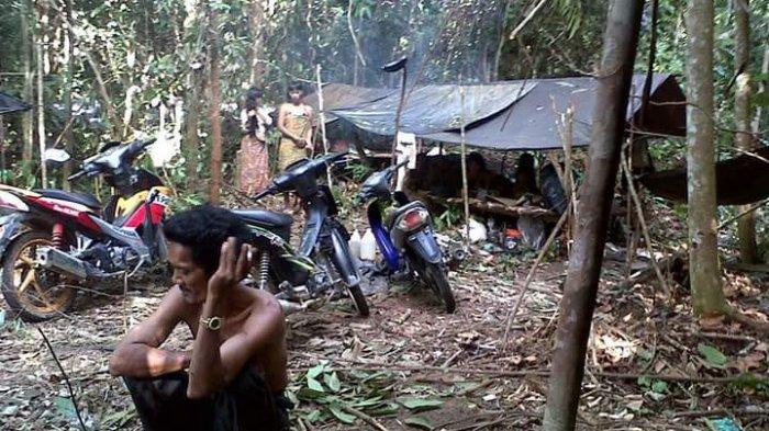 Ratusan Warga Suku Anak Dalam di Tebo Tak Terdata Pemilu 2019