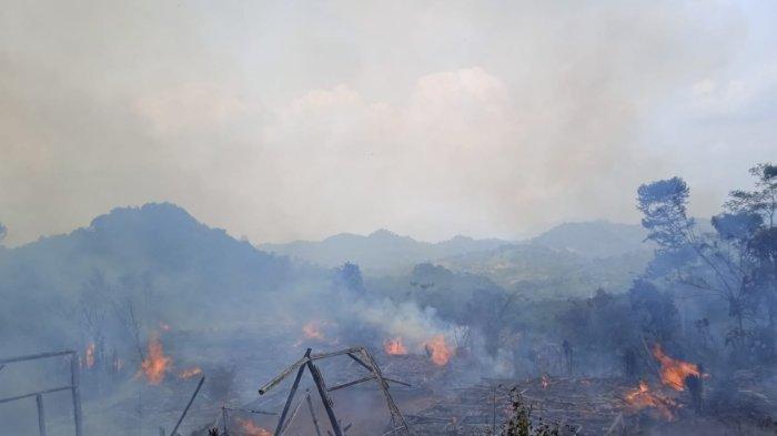 BPBD Kabupaten Lebak Bangun Pos Pengungsian untuk Korban Kebakaran di Badui Luar