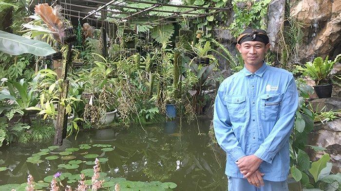 Sumiyanto Nezu dengan pohon yang berasal dari Jawa.