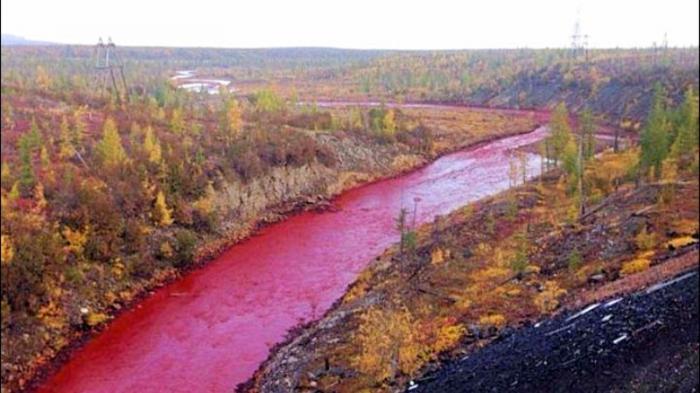HEBOH! Air Sungai Secara Misterius Berubah Warna Merah Darah