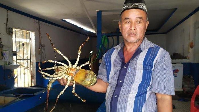 Syarifuddin, pengusaha lobster di Dusun Gallea, Desa Biangkeke, Kecamatan Pajukukang, Kabupaten Bantaeng
