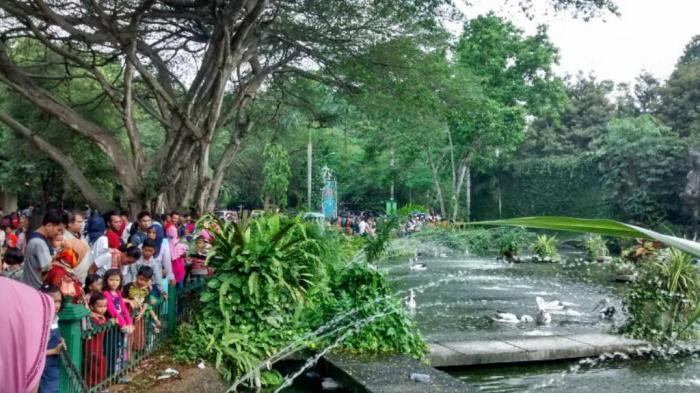 Kebun Binatang Ragunan Diserbu Pengunjung