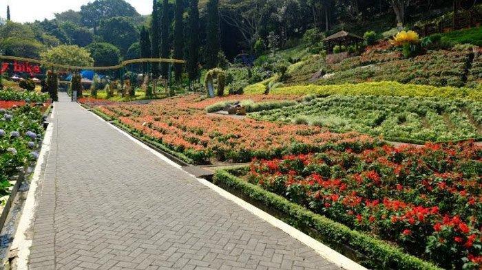 Awas Kecele, Taman Wisata Selecta di Kota Batu Masih Tutup, Jatim Park 2 Sudah Buka