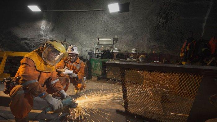 Ini Permintaan Bupati Mimika kepada Freeport Terkait Smelter dan Konsentrat