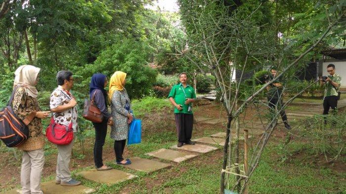 40 dari 150 Jenis Minyak Atsiri yang Ada, Bisa Diproduksi di Indonesia: Ini Dia Segudang Manfaatnya