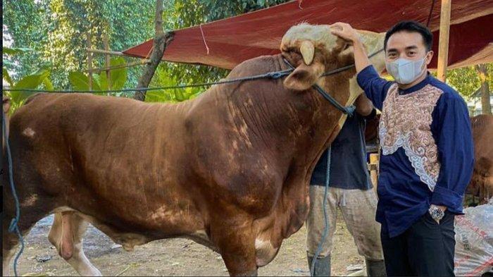 Taqy Malik berfoto bersama sapi limosin yang dikurbankannya di Masjid Al Falah, Mampang Prapatan, Jakarta Selatan, Selasa (20/7/2021).