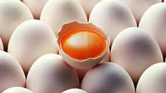 Jangan Tertipu Telur Ayam Kampung Aspal! Ini Cara Membedakannya