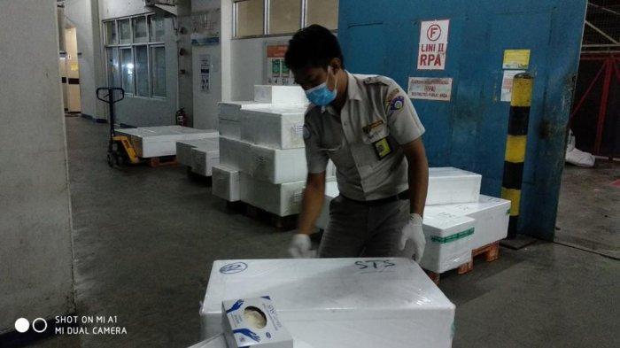 KKP Permudah Ekspor Produk Perikanan ke Singapura dan Australia