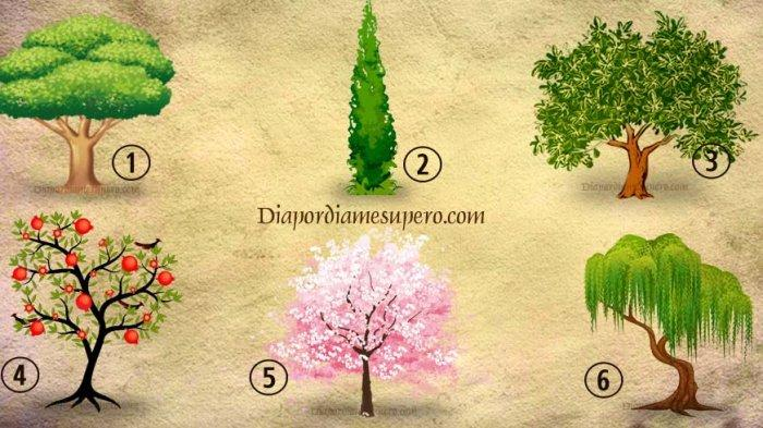 Tes kepribadian dengan cara memilih 1 gambar pohon yang paling disuka.
