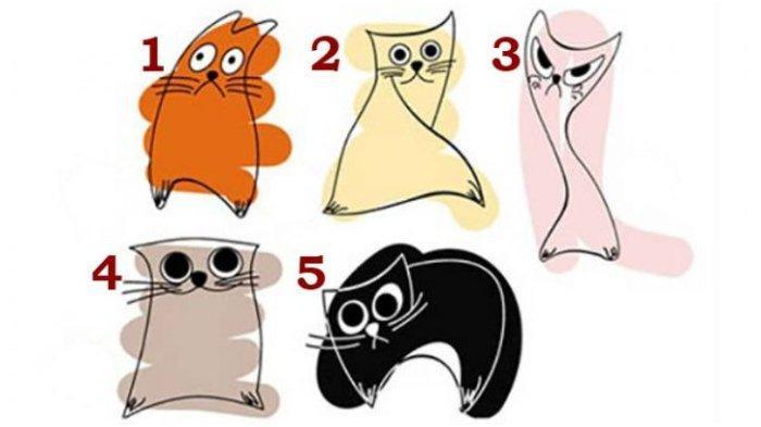 Tes kepribadian ini untuk mengetahui rahasia karakter kamu dengan memilih gambar kucing paling disuka.