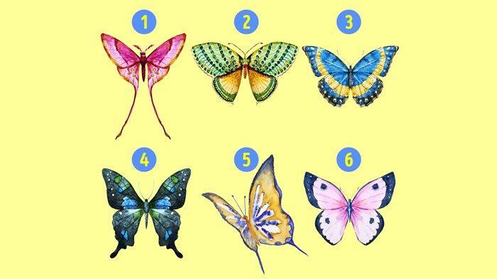 Tes Kepribadian - Mana Kupu-kupu yang Kamu Pilih? Ungkap Hal yang Tak Disadari Orang Lain Tentangmu!