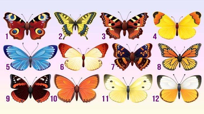 Tes Kepribadian: Pilih Satu Kupu-kupu untuk Mengetahui Potensi Tercapainya Tujuan Hidupmu