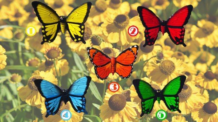 Tes Kepribadian Setiap Gambar Kupu-kupu Memiliki Pesan, Pilih Satu dan Temukan Kepribadianmu