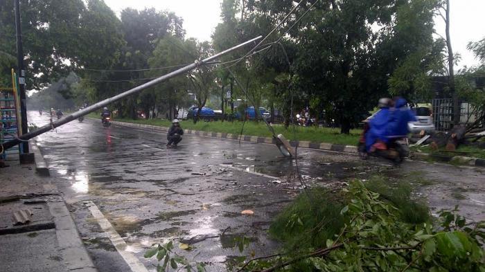 Hujan Disertai Angin Kencang Guyur Bogor, Pohon dan Tiang Listrik Roboh di Jalan Baru