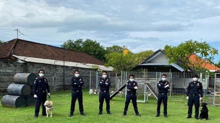 Berkat Anjing Pelacak, Bea Cukai Bali Nusra Bongkar Penyelundupan Narkoba