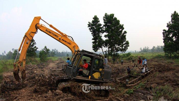 Tim Rescue Balai Besar Konservasi Sumber Daya Alam (BBKSDA) Riau berusaha mengevakuasi anak gajah sumatera liar yang terjerat di kawasan lindung konsesi PT Arara Abadi (AA), Distrik Melibur,  Desa Lubuk Umbut, Kec Sungai Mandau, Kab Siak, Rabu (16/10/2019). Diperkirakan anak gajah jantan berusia setahun dengan berat sekitar 200 kg tersebut telah terkena jerat selama kurang lebih sebulan, namun baru diketahui pada Selasa (15/10/2019). Jerat yang diduga sengaja dipasang oleh warga untuk menjerat babi kerap mengancam satwa lainnya hingga dapat berakibat fatal. Gajah tersebut akhirnya ditempatkan di Pusat Latihan Gajah Minas. TRIBUN PEKANBARU/THEO RIZKY