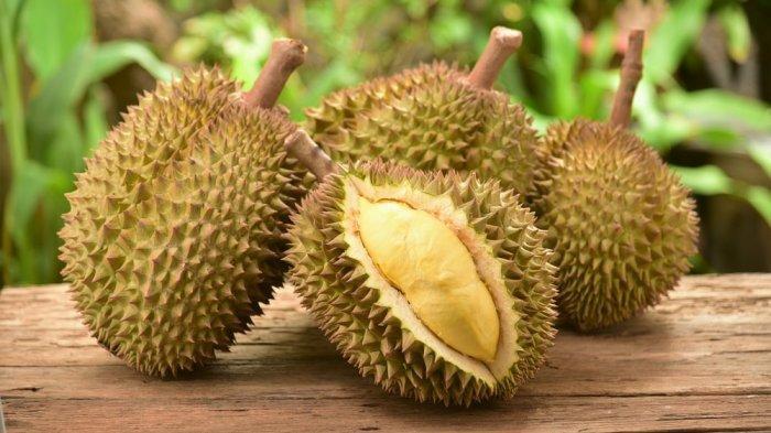 Bolehkah Ibu Hamil Makan Durian ?