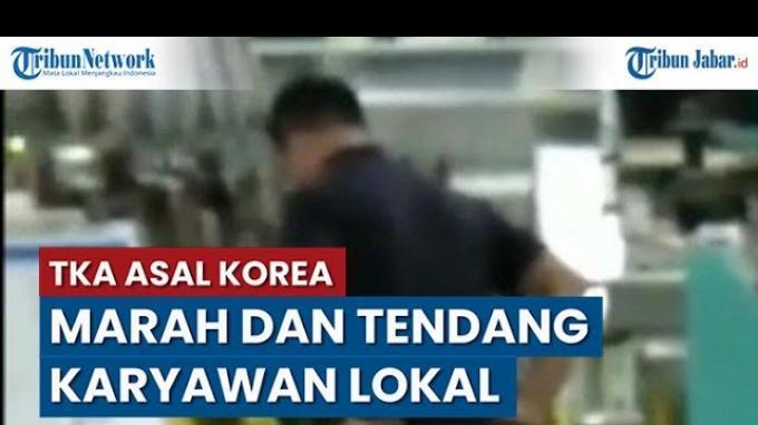 TKA Pria Asal Korea Tendang Karyawati saat Makan, Videonya Viral dan Pihak Perusahaan Buka Suara