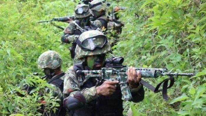 TNI Tembak Mati Komandan Operasi KKB Elly Bidana di Pegunungan Bintang Papua