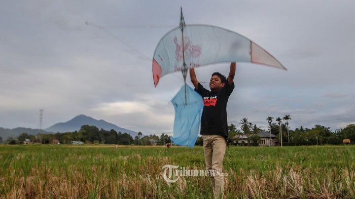 Sektor Pertanian Tumbuh Positif di Tengah Perlambatan Ekonomi Indonesia