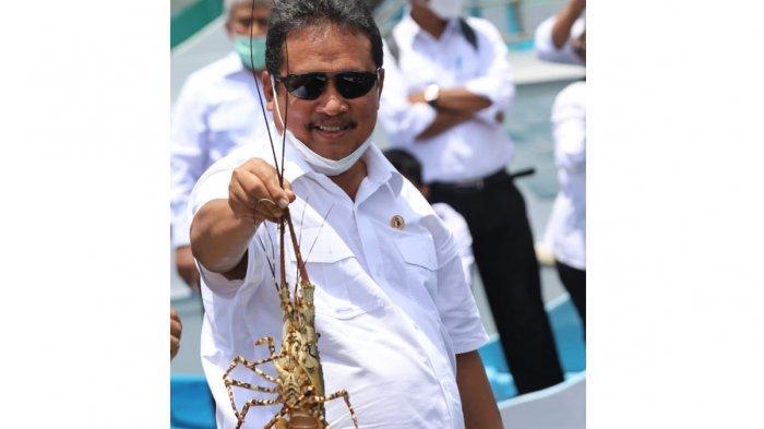 Peraturan Pengelolaan Lobster Terbit, Trenggono Penuhi Janji saat Dilantik Jadi Menteri