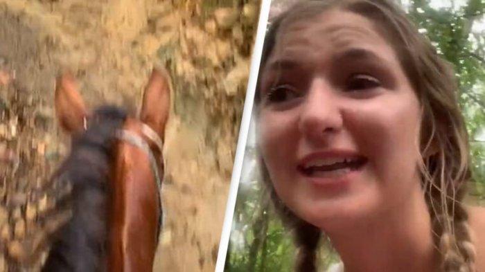 Viral di Medsos, Turis Tersesat di Hutan saat Menunggangi Kuda dalam Kondisi Mabuk