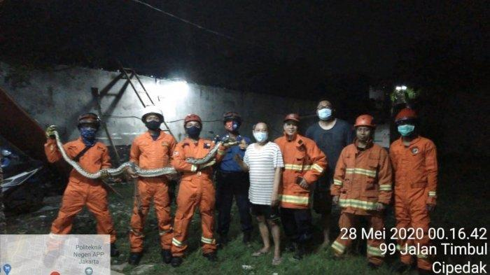 Tengah Malam, Warga di Jagakarsa Dikagetkan Kemunculan Ular Sanca 3 Meter di Atas Pagar