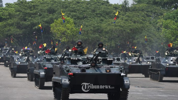 Pengamat: Indonesia Berpotensi Jadi Kawasan Perang, Modernisasi Alutsista TNI Mendesak