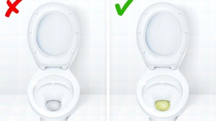 urin tidak berwarna