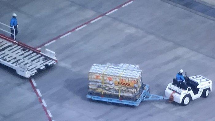 Vaksin Pfizer yang tiba di Bandara Narita Chiba Jepang, Minggu (14/2/2021).