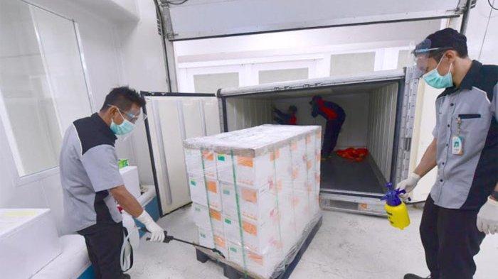 Tiba di Cengkareng Pada Minggu Malam, Vaksin Sinovac Langsung Disimpan di Bio Farma Bandung