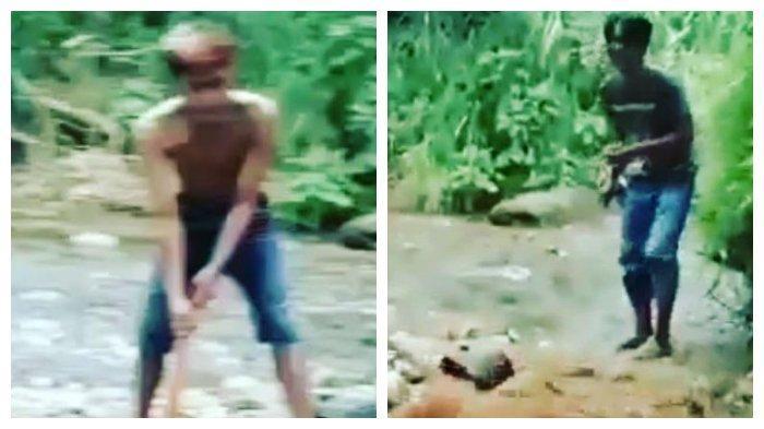 Viral Video Pemuda Menyiksa Satwa Langka Simpai, BKSDA Sumbar Lakukan Investigasi