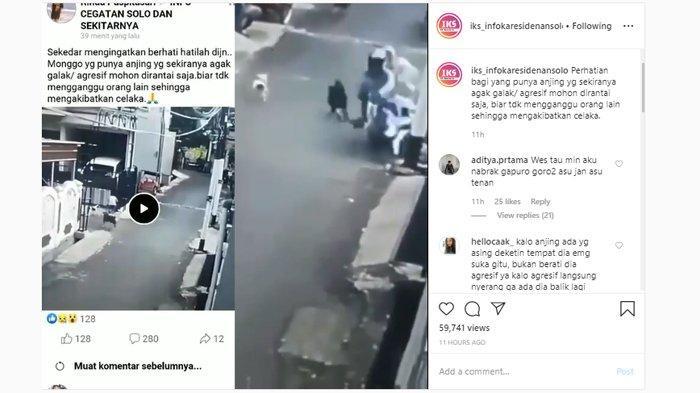 Viral Video Anjing Kejar Pengendara Motor yang Bawa Bayi hingga Jatuh, Dog Lovers Beri Imbauan