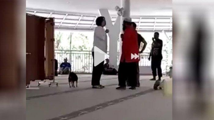 Viral Video Wanita Bawa Anjing ke Dalam Masjid Sambil Berteriak di Sentul Bogor